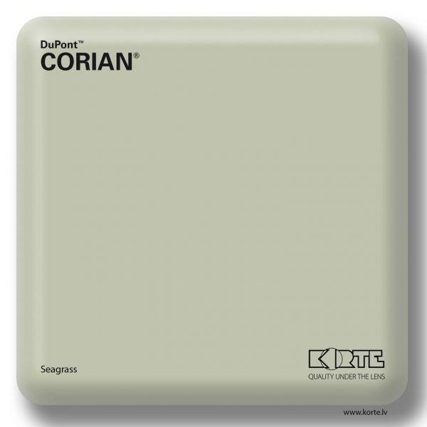 Corian Seagrass