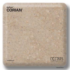 Corian Tumbleweed