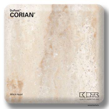 Corian Witch Hazel