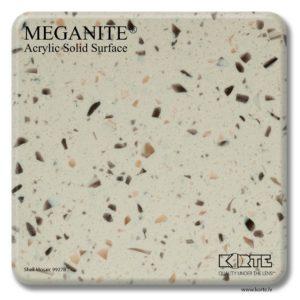 Meganite Shell Mosaic 9927B